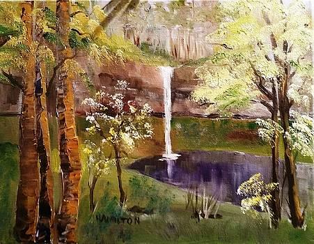Oregon Waterfall by Larry Hamilton
