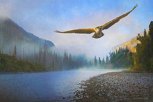 Osprey Dawn River Fog by R christopher Vest