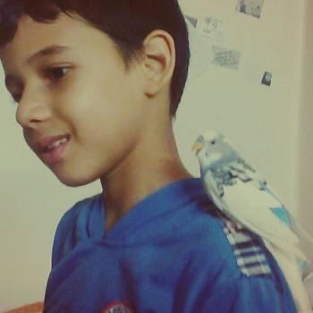 Our Cute Karkar #bird #cute #fly #free by Eman Allam