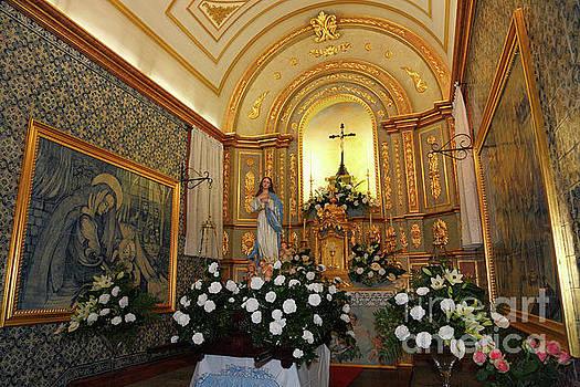 Gaspar Avila - Our Lady of Conception