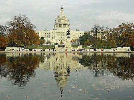 Our Nation's Capitol by Emmy Marie Vickers