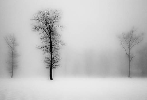 Out of the Fog by Antonio Gruttadauria