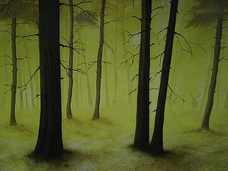 Out Of The Woods by Ronnie Jackson