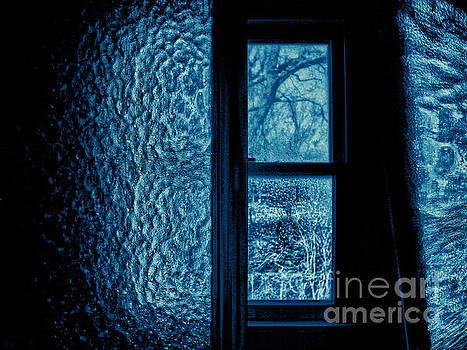 Out The Bathroom Window by Jeff Breiman