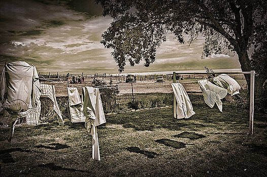 Steve Ohlsen - Out to Dry 2 - Antelope Island State Park