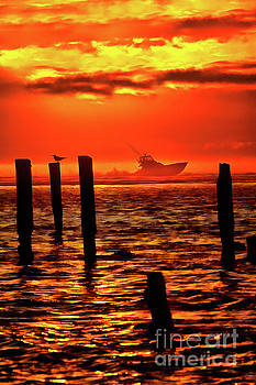 Dan Carmichael - Out to Sea at Sunrise - Outer Banks  AP