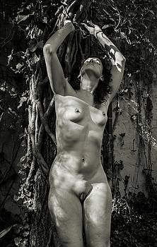 Outdoor Female Nude 2016 by Wayne Higgs