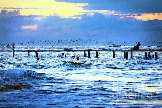 Dan Carmichael - Outer Banks Fishing Boats and Birds AP