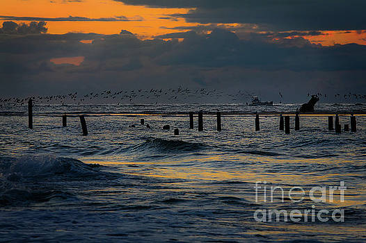 Dan Carmichael - Outer Banks Fishing Boats and Birds