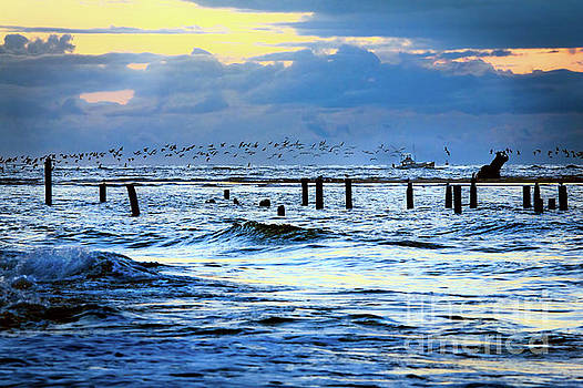 Dan Carmichael - Outer Banks Fishing Boats and Birds FX