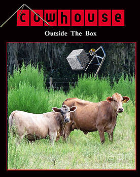 Outside of the Box No. I by Geordie Gardiner