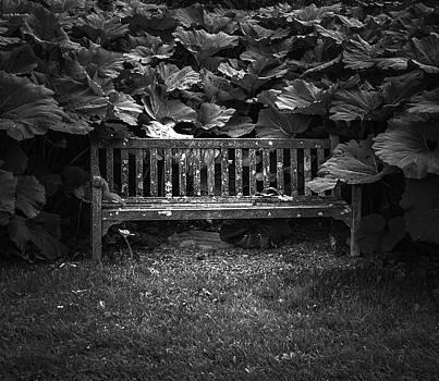 Overgrown by Jason Moynihan