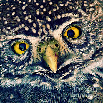 Angela Doelling AD DESIGN Photo and PhotoArt - Owl