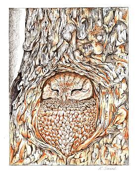 Owl Sleeping by Karen Sirard