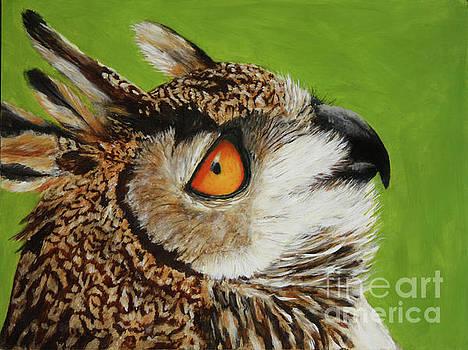 Owl by Sid Ball