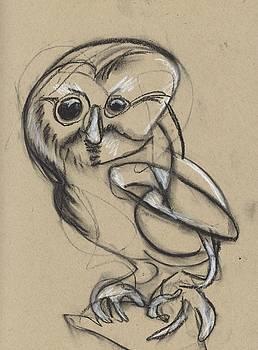 Owl Study #I by Drew Eurek