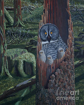 Owls In A Rainforest by Stanza Widen