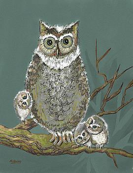 Owls by Shane Guinn
