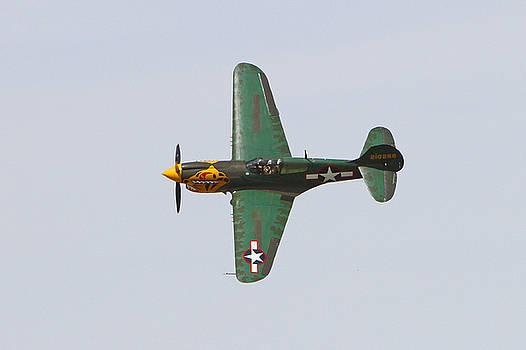 P-40E Warhawk in Flight by Shoal Hollingsworth