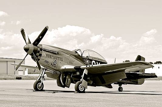 P-51 Mustang Airplane by Amy McDaniel