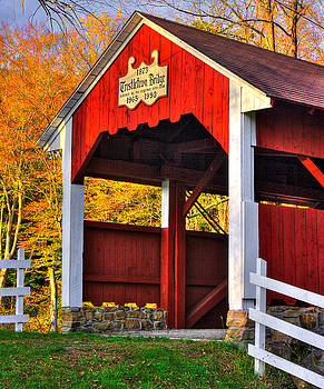 PA Country Roads - Trostletown Covered Bridge Over Stony Creek No. 6A Close1 - Somerset County by Michael Mazaika