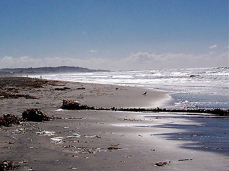 Pacific Beach by Maria Mills