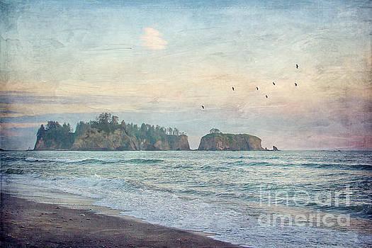 Pacific Coast Sea Stacks by Joan McCool