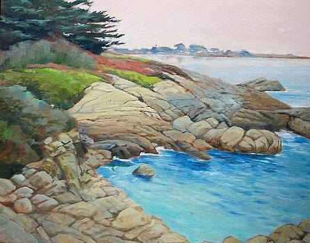 Pacific Grove 2 by Maralyn Miller