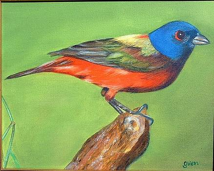 Painted Bunting by Gwendolyn Frazier