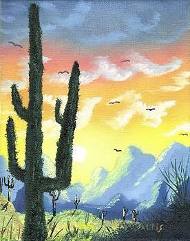 Painted Desert by Jim Saltis
