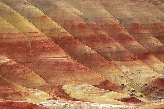 Painted Hills - Up Close And Personal - 3 by Hany Jadaa Prince John Photography