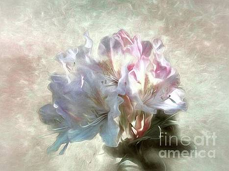 Painted Rhododendron by Peggy J Hughes