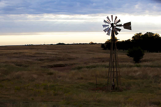 Painted Windmill by Jonas Wingfield