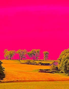 Painter Ridge by Gillis Cone