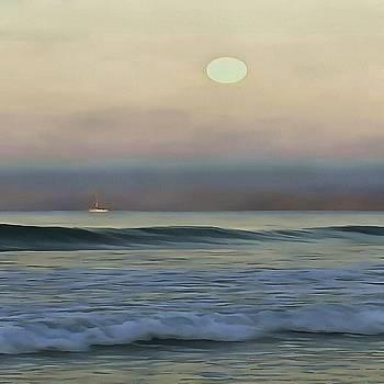 Tracey Harrington-Simpson - Pale Sunset