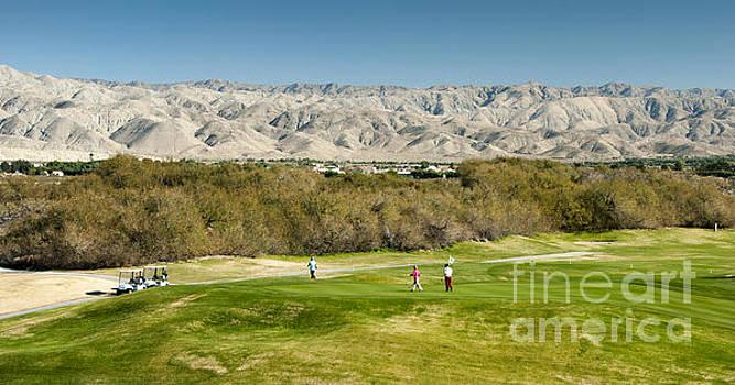 David Zanzinger - Palm Desert Golf Fairway Mountains