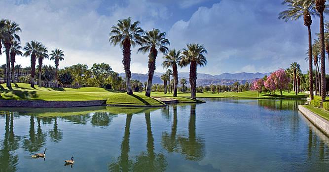 David Zanzinger - Palm Desert Pond Mountaoins