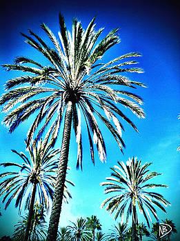 Palm Pow by Nicole Dumond-Barry