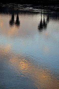 Palm Reflection by Sue Houston