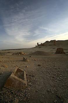 Palmyra sarcophagus by Marcus Best