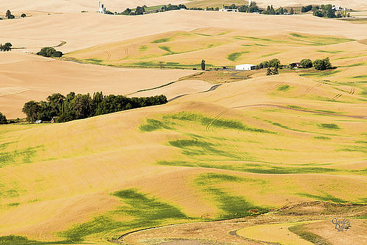 Palouse 18 by Claude Dalley
