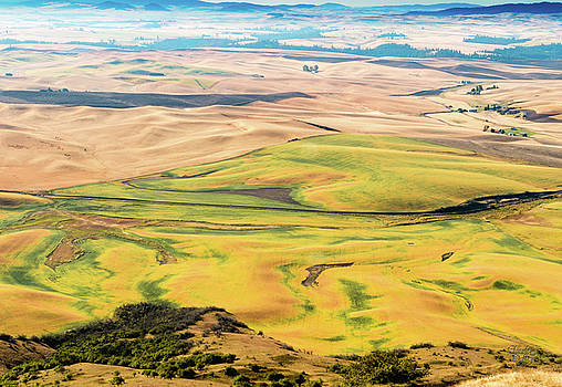 Palouse 20 by Claude Dalley