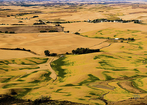 Palouse 22 by Claude Dalley