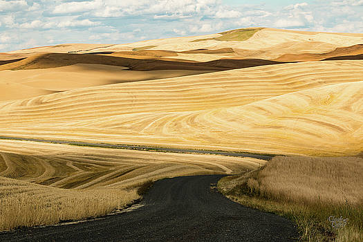 Palouse 24 by Claude Dalley