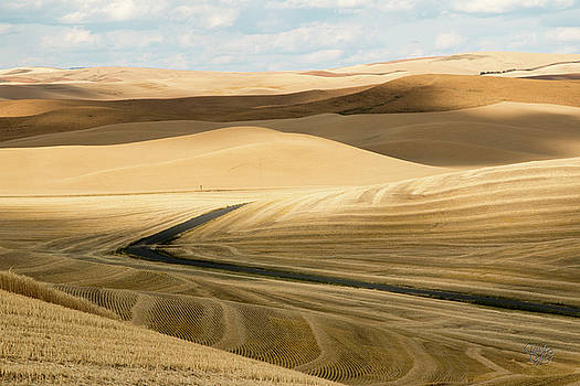 Palouse 25 by Claude Dalley