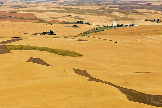 Palouse 26 by Claude Dalley