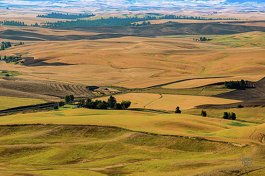 Palouse 27 by Claude Dalley