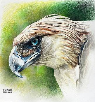Philippine Eagle - Pamana by Bong Perez