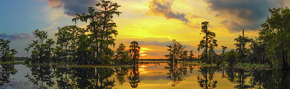 Pana The Yellow Sunset Of Louisiana  by Kimo Fernandez