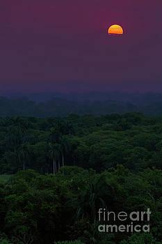 Panamanian Sunrise by Doug Sturgess